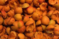 Zubereitung des Rezepts Unübertreffliche Aprikosenkonfitüre aus Omas Küche – ohne Gelierzucker, schritt 1