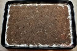 Zubereitung des Rezepts Schneller 10-Minuten-Schaumkuchen ohne Backen, schritt 5